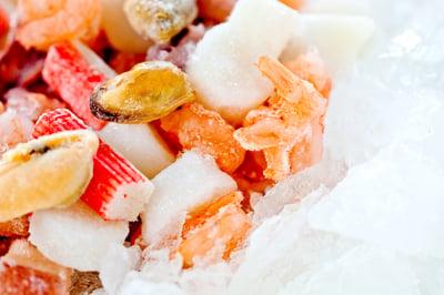 IQF seafood freezing