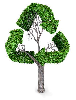 3D recycling tree  isolated over a white background